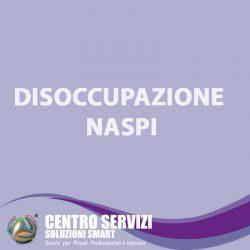 NASPI e1618676390677